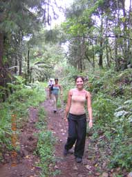 On the jungle path to the volcano Mahawu